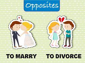 結婚と離婚